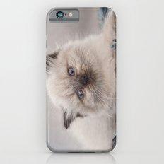 Pretty Kitty iPhone 6 Slim Case