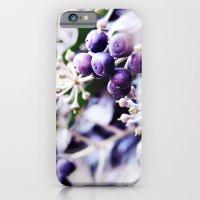 Vanilla Blue iPhone 6 Slim Case