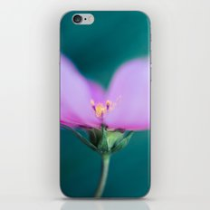 Pink Beauty iPhone & iPod Skin