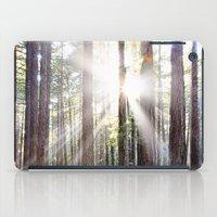 Sunburst Through the Redwoods iPad Case