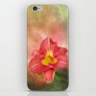 Beautiful Day Lily iPhone & iPod Skin