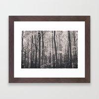 Deep In Woodland - Black… Framed Art Print