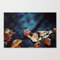 Leaves And Water Canvas Print
