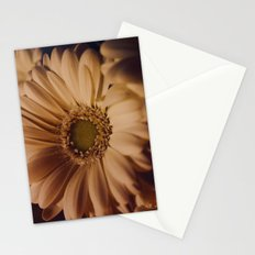 Antique Daisy Stationery Cards