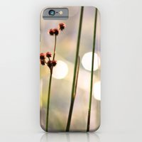 iPhone & iPod Case featuring Sunset Lake by Sonya Lietta