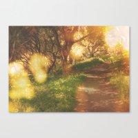Oak Trail Canvas Print