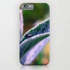 fly on Stachys leaf Photography - Nature - Garden - Plant  iPhone 6 Slim Case