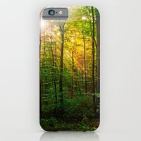 Morning sun in the forest iPhone 6 Slim Case