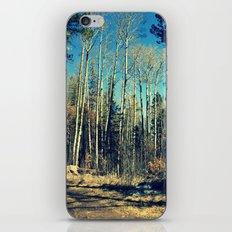 Aspens in Winter  iPhone & iPod Skin