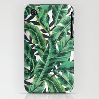 iPhone 3Gs & iPhone 3G Cases featuring Tropical Glam Banana Leaf Print by Nikki