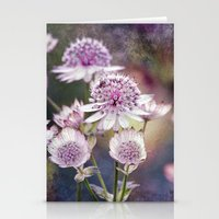 Textured Astrantia Stationery Cards