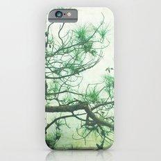 Winter Pine iPhone 6s Slim Case