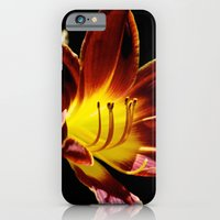 Reaching For The Sun iPhone 6 Slim Case