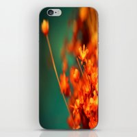 The Piper is Calling iPhone & iPod Skin