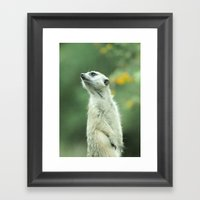 Scout Framed Art Print