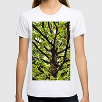 Leaves And Branches Womens Fitted Tee Ash Grey SMALL