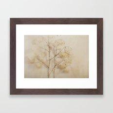Lunaria Framed Art Print