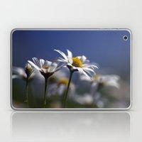 Daisies 3610 Laptop & iPad Skin
