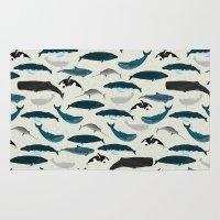 Whales and Porpoises sea life ocean animal nature animals marine biologist Andrea Lauren Rug