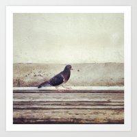 Bird Walk Art Print