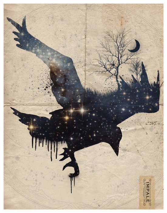 Space Raven Art Print
