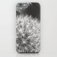 iPhone & iPod Case featuring Dandelion Wishes by Sirka H.