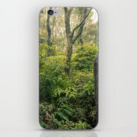 Hawaiian Rain Forest iPhone & iPod Skin