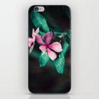 Survivor iPhone & iPod Skin