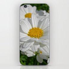 beauty daisy iPhone & iPod Skin