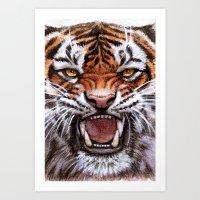 Roar Tiger 914 Art Print