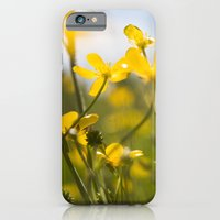 iPhone Cases featuring summer XI by petra zehner