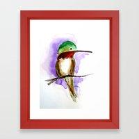 Hummingbird A Framed Art Print