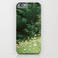 iPhone & iPod Case featuring Wildflowers 2 by Felicity Crew