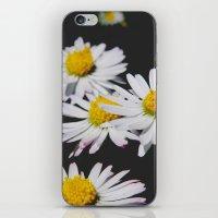 Daisies #1 iPhone & iPod Skin