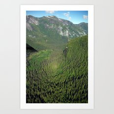 Another Kind of Rainforest Art Print