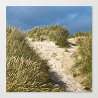 Scandinavian Sand Dune of Henne in Denmark Canvas Print