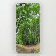Bronze Age Fortification iPhone & iPod Skin