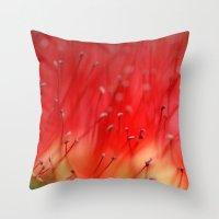 Callistemon's Secret 251… Throw Pillow