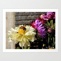 Close-up Of A Busy Bee O… Art Print