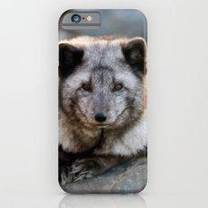 Vulpes Lagopus iPhone 6s Slim Case