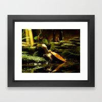 Mr. Turtle Workin' On Hi… Framed Art Print