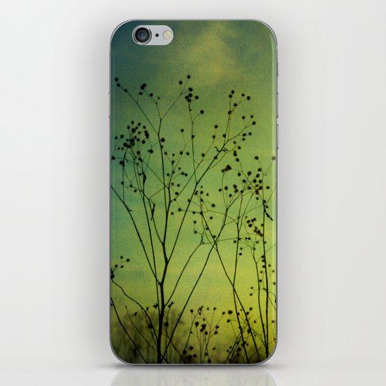 Fleeting Moment iPhone & iPod Skin