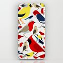 The birds from the colorful world iPhone & iPod Skin