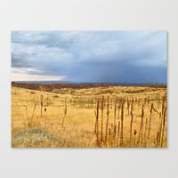Horsetooth Hills Canvas Print