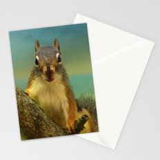 Little Red Squirrel Stationery Cards