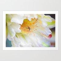 Bountiful Morning Harves… Art Print