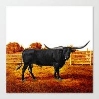 Bull Orange Canvas Print