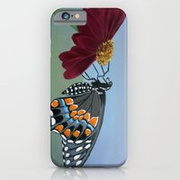 iPhone & iPod Case featuring Up Close by maggs326