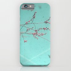 A Kiss in the Sky iPhone 6s Slim Case