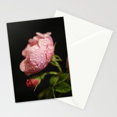 Weeping Rose II Stationery Cards